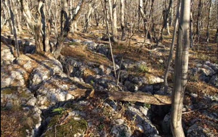 Restoration of energy balance in Crimean Shambhala - Boyko Mountain